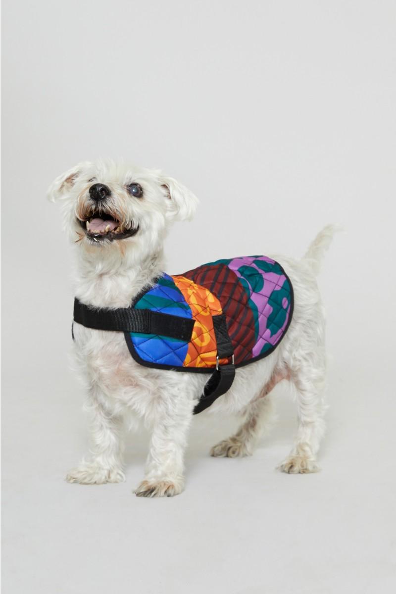 30cm Walk It Dog Coat