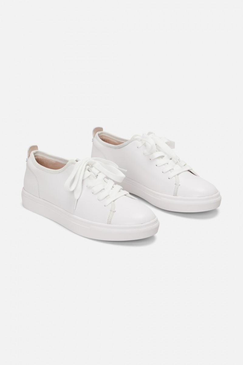 Clean Sneaker