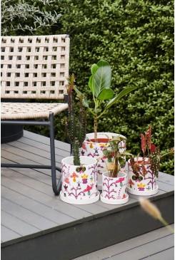 Orchid Friends Pot Medium