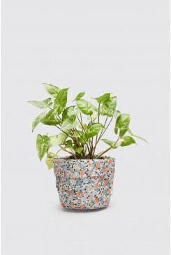 Mini Terazzo Small Planter
