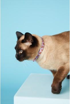 Modern Lover Cat Collar